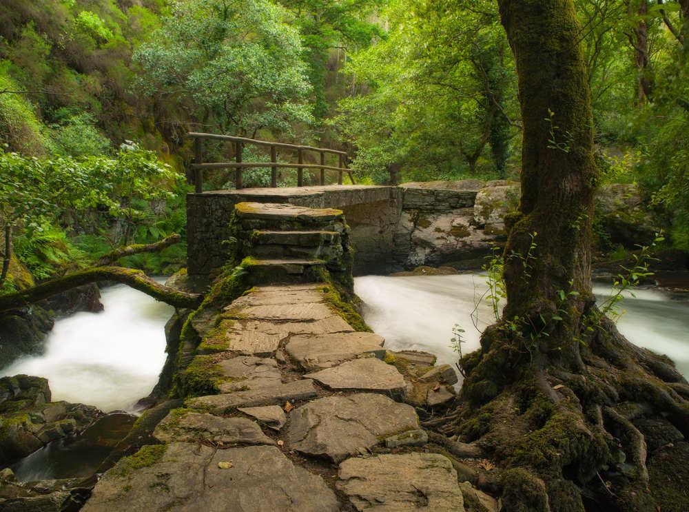 En busca de las zonas verdes de España